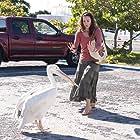 Ashley Judd in Dolphin Tale (2011)