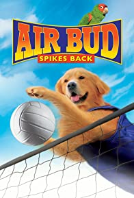 Primary photo for Air Bud: Spikes Back
