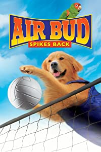 Full movies site video download Air Bud: Spikes Back [420p]