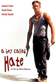 A Boy Called Hate Poster