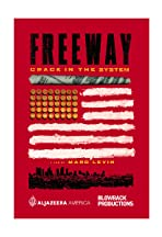 Freeway: Crack in the System