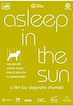 Asleep in the Sun