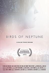 Primary photo for Birds of Neptune