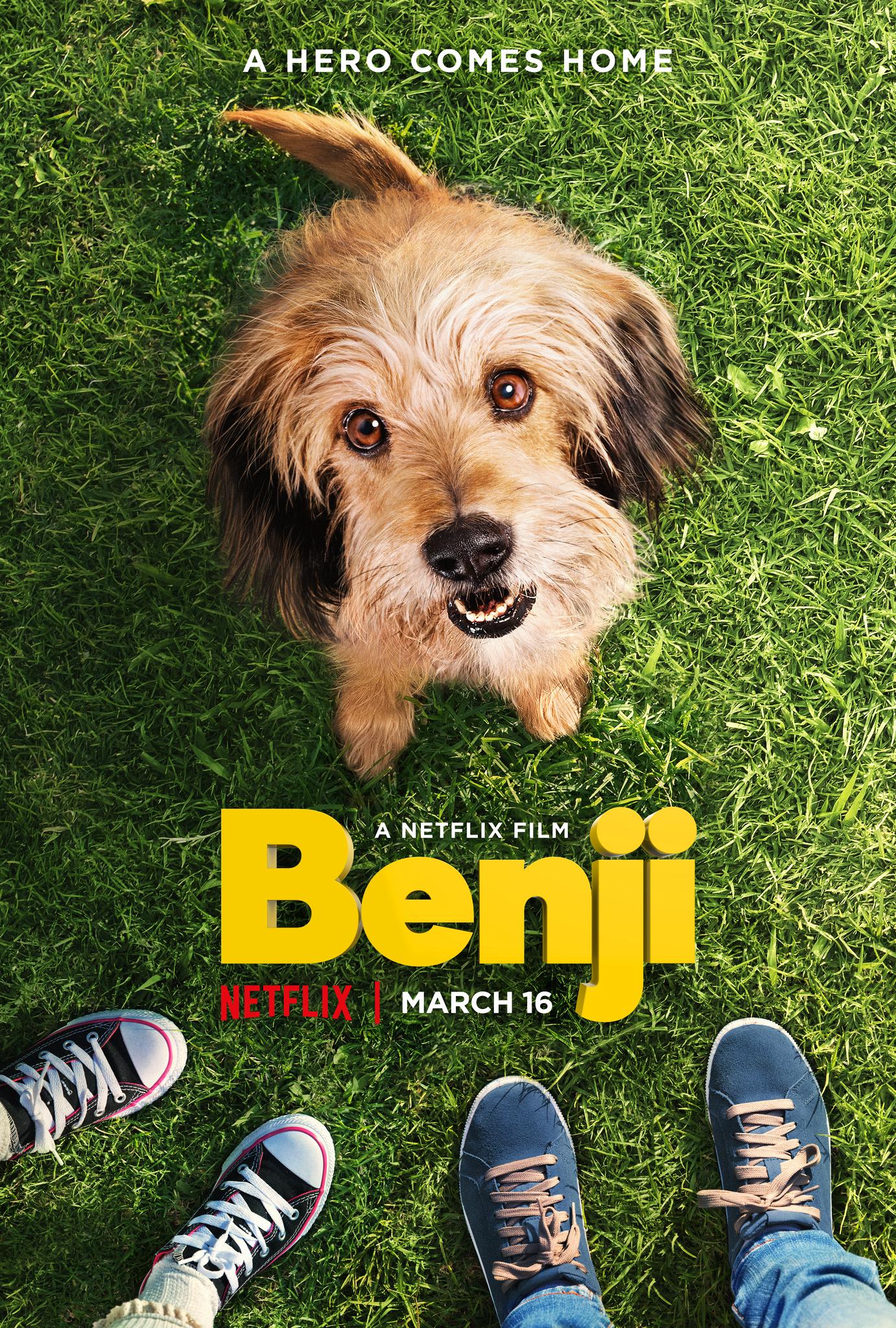 BENDŽIS (2018) / BENJI
