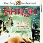 Shiloh (1996)