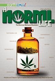 A Norml Life (2011) 720p