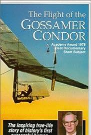 The Flight of the Gossamer Condor Poster