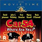 Car 54, Where Are You? (1994)