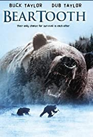 Beartooth Poster