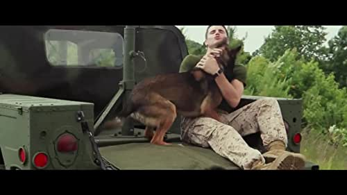 A dog that helped US Marines in Afghanistan returns to the U.S. and is adopted by his handler's family after suffering a traumatic experience.