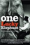 One Lucky Elephant (2010)