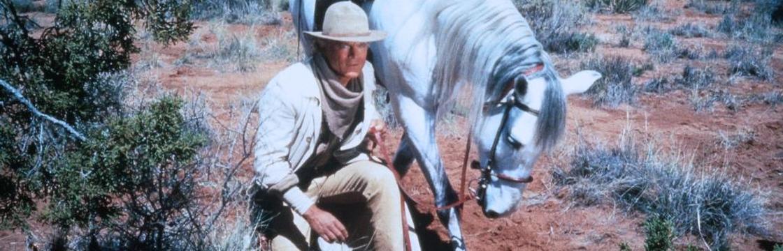 Terence Hill in Lucky Luke (1991)