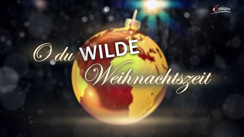 TERRA MATER GYVŪNŲ KALĖDOS (2019) / O du wilde Weihnachtszeit