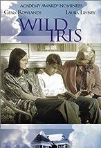 Primary image for Wild Iris