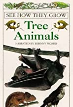 See How They Grow: Tree Animals