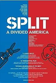 Split: A Divided America Poster