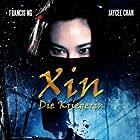 Zhui ying (2009)