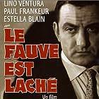 Le fauve est lâché (1959)
