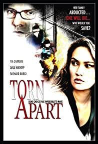 Primary photo for Torn Apart