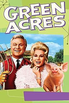 Green Acres (1965–1971)