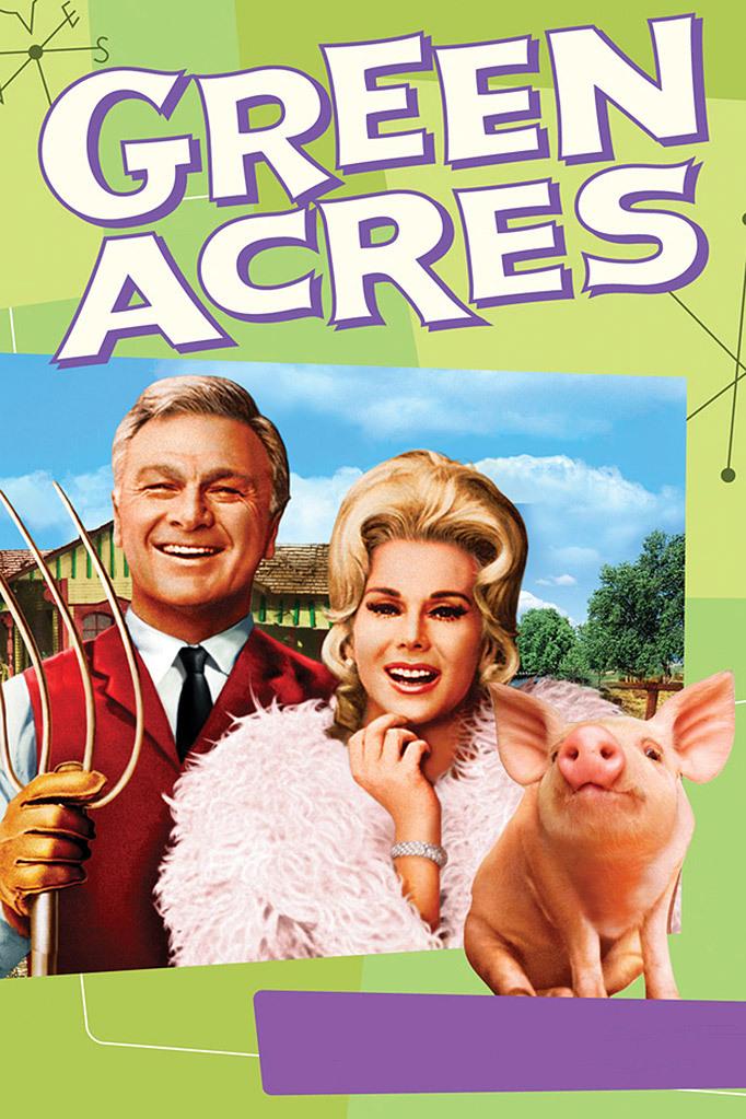 Eddie Albert, Eva Gabor, and Arnold the Piggy in Green Acres (1965)