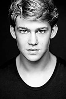 Joe Alwyn Picture