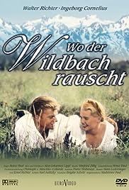 Wo der Wildbach rauscht Poster