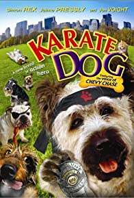 Primary photo for The Karate Dog