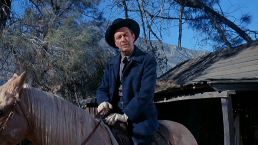 Robert Taylor in Cattle King (1963)