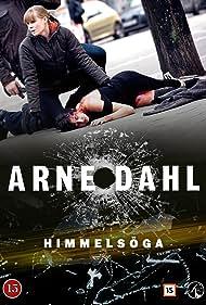 Arne Dahl: Himmelsöga (2015)