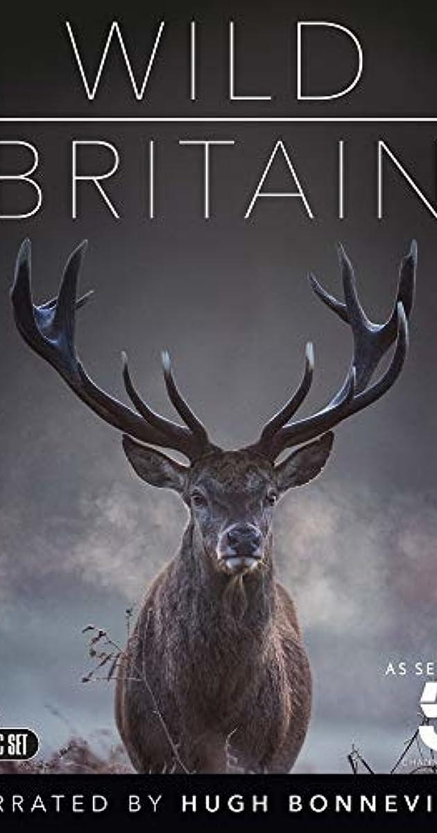 download scarica gratuito Wild Britain o streaming Stagione 1 episodio completa in HD 720p 1080p con torrent