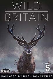 Wild Britain Poster