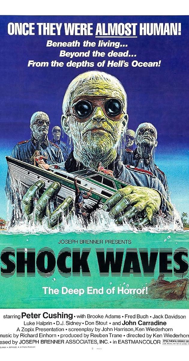 Subtitle of Shock Waves