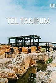Tel Taninim Poster