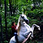 """On location in Canada with star/actor Kevin Zegers on """"Nico the Unicorn"""" with no saddle! Animal trainer Sled Reynolds made it work. He's the best in the biz (remember the lions in Gladiator!) A Columbia release."""