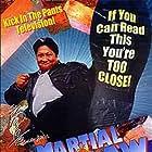 Sammo Kam-Bo Hung in Martial Law (1998)