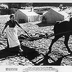 Maureen O'Hara and Claude Jarman Jr. in Rio Grande (1950)