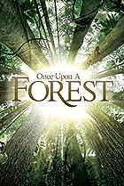 Il était une forêt (2013) Poster