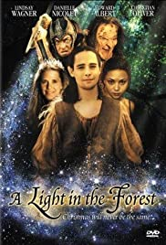 A Light In The Forest Poster Photo