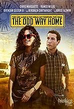 The Odd Way Home