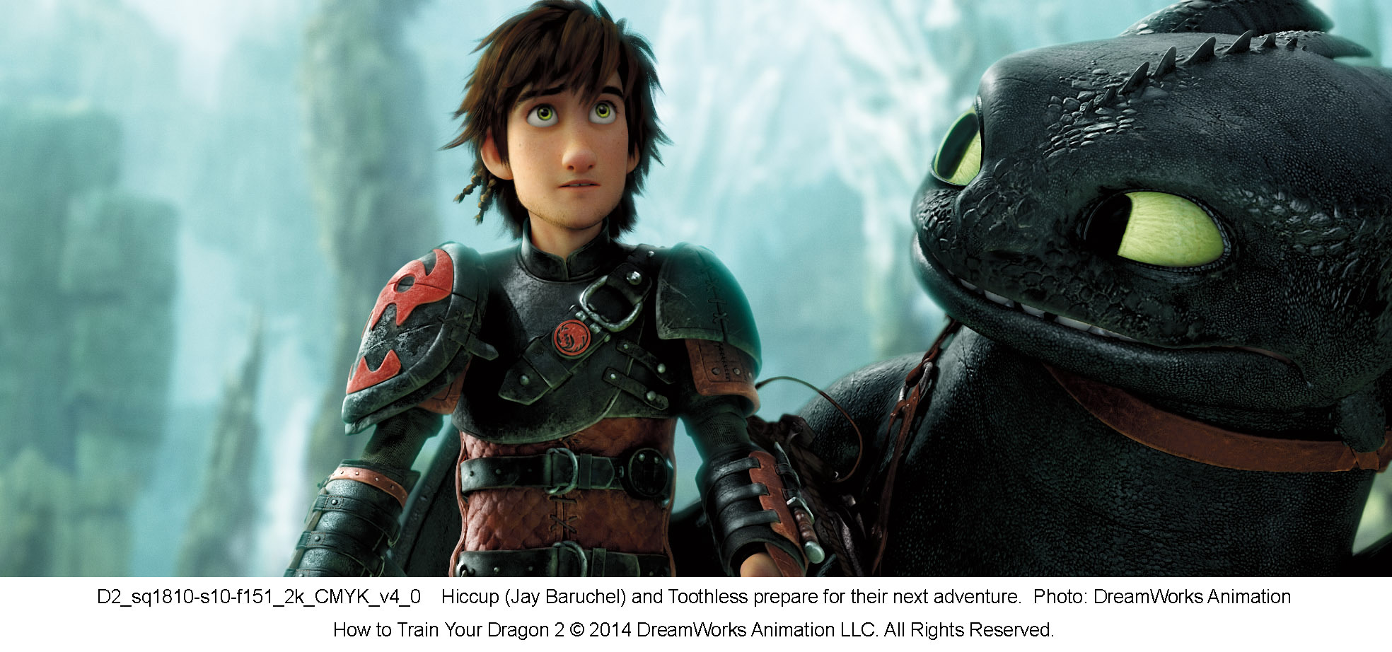 How to Train Your Dragon 11 (11014)