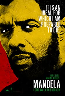 Mandela: Long Walk to Freedom (2013)