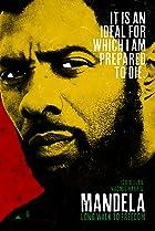 Mandela: Long Walk to Freedom (2013) Poster