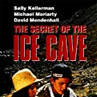 The Secret of the Ice Cave (1989)