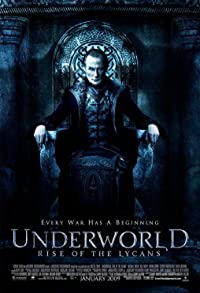 Primary photo for Underworld: Rise of the Lycans