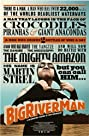 Big River Man (2009) Poster