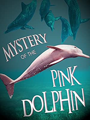Where to stream The Mystery of the Pink Dolphin