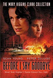 Before I Say Goodbye Poster