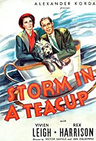 Primary photo for Storm in a Teacup
