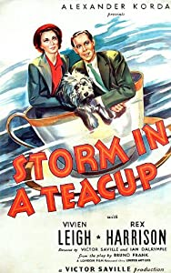 3d movie downloads itunes Storm in a Teacup by Victor Saville [Full]